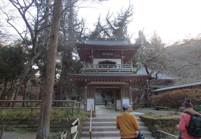 江ノ島・鎌倉七福神巡り 浄智寺(布袋尊)