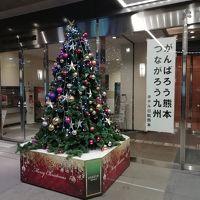 クリスマス前にてツリーが、熊本の復興を願ってます