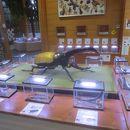 竜洋昆虫自然観察公園