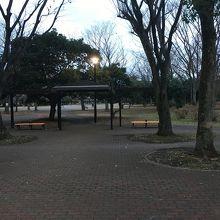 清澄庭園の隣