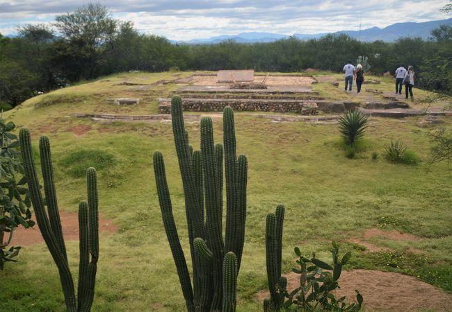 サアチーラ遺跡