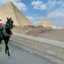 馬車でのピラミッド周回をする観光客