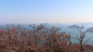 残念ながらきれいな桜には少し早かったです
