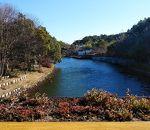 浜名湖ガーデンパーク 国際庭園