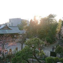 富士塚からの眺め