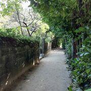 のんびりと散歩