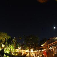 庭から星空