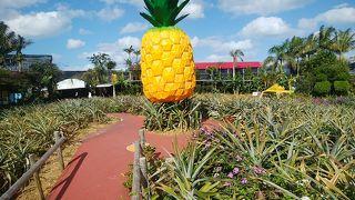 美味しいものが楽しめるパイナップルパーク
