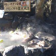 見所はやはり、カピパラの露天風呂。