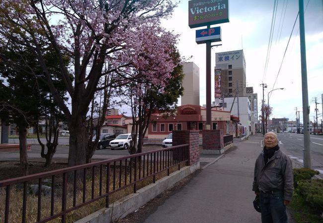 ヴィクトリアステーション 網走駅前店