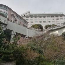 庭園よりホテルを眺める