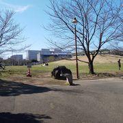 新浦安の公園