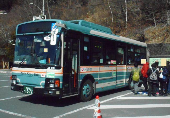 路線バス (西武観光バス)
