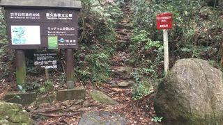 モッチョム山荘