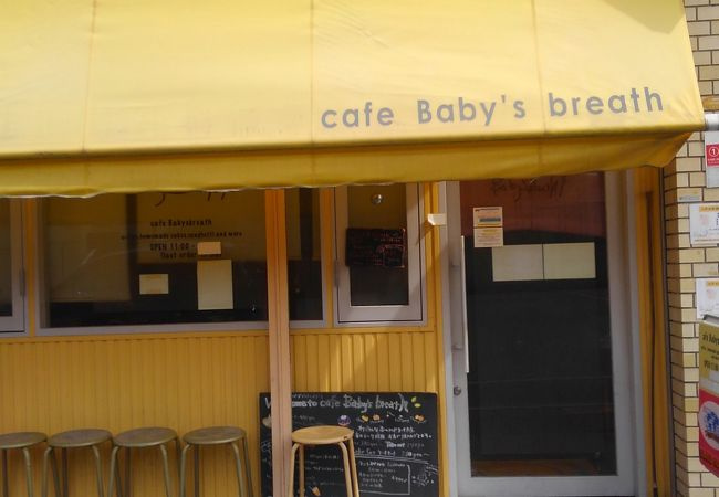 cafe Baby's breath