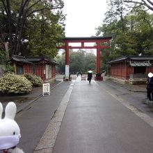 参道から神社へ。