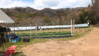 農業公園信貴山のどか村