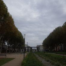 Square Gambeta
