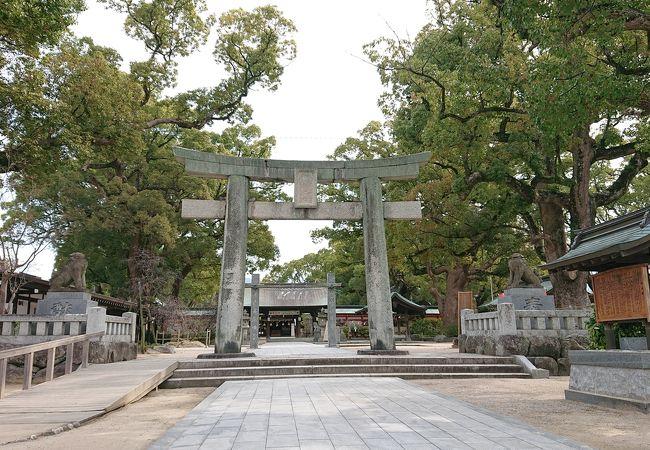 日本書紀や古事記にも記載がある應神天皇降誕の聖地、天然記念物の大楠が見事