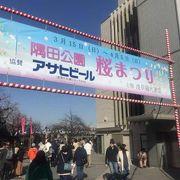 早くから桜祭りです。