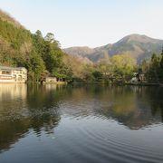 春の金鱗湖(人口湖)
