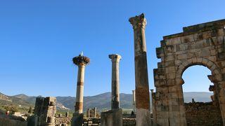 モロッコにローマ遺跡!しかもすごい!!