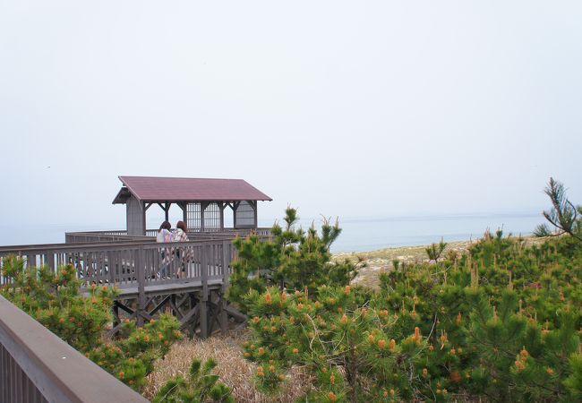 海の中道海浜公園 玄界灘のエリア