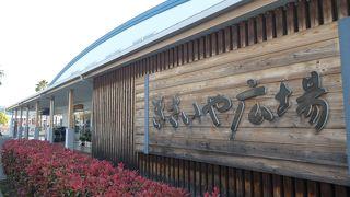 食だけでなく宇和島観光案内も多数館内に有りました