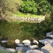 徳島城跡の公園にある日本庭園