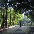 写真:徳島城跡