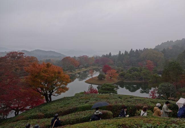 霧雨・曇空でなく晴れていたらもっと良かったが