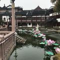 写真:豫園老街