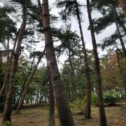 日本三大松原の一つ