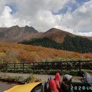 秋は紅葉、春は新緑