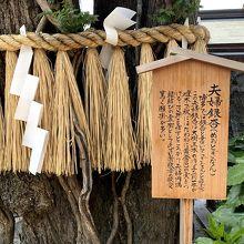 櫛田神社 夫婦銀杏