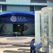 セントーサ島の水族館