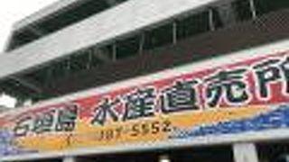 石垣島水産直売所