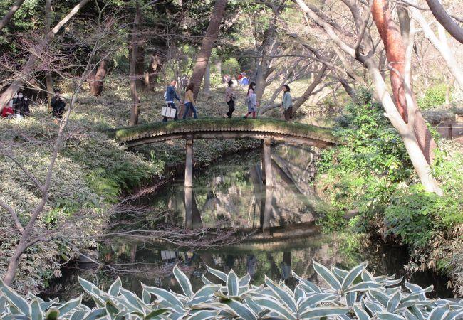 六義園 山陰橋