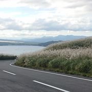 山中湖を見下ろす