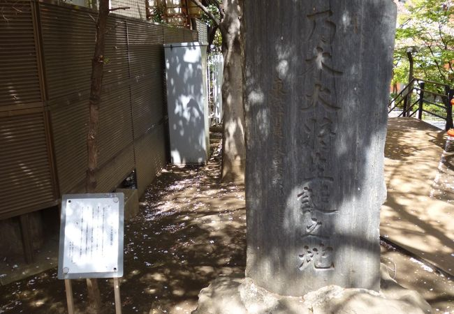 庭園 生誕 毛利 安芸高田市の観光スポット10選!吉田郡山城があった利元就生誕の地