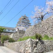 桜と石垣がすばらしかったです