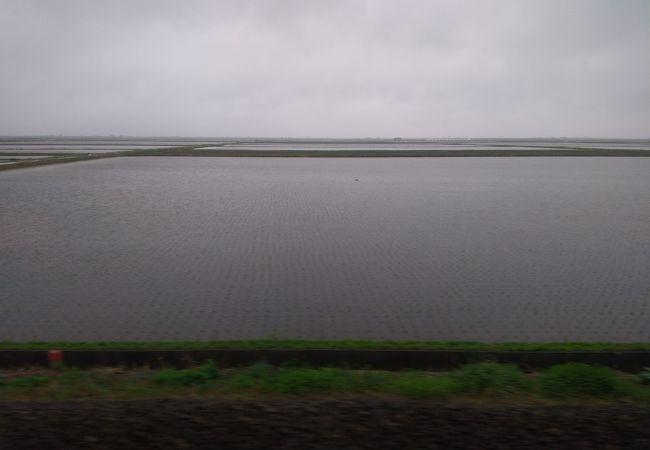 八郎潟調整池