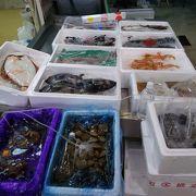 新鮮で美味しそうな海産物