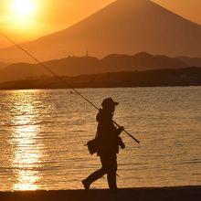 時には釣り人が。