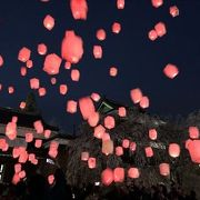 桜がとても綺麗でした、ライトアップされていて素敵でした。さらにランタン挙げもやっていて、とても楽しかったです。