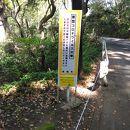 県立真鶴半島自然公園