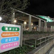 トキハグループのスーパーマーケットの向かいにある広い公園で、機関車などが展示されていました。