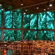 ガラス張りレストランからの眺めが最高