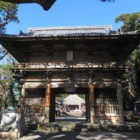 高知県旅行 人気