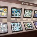 名和昆虫博物館 はいむるぶし分室